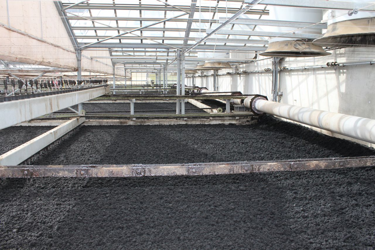Picture 3 – View  of the ground covered  with sludge under the  greenhouse construction