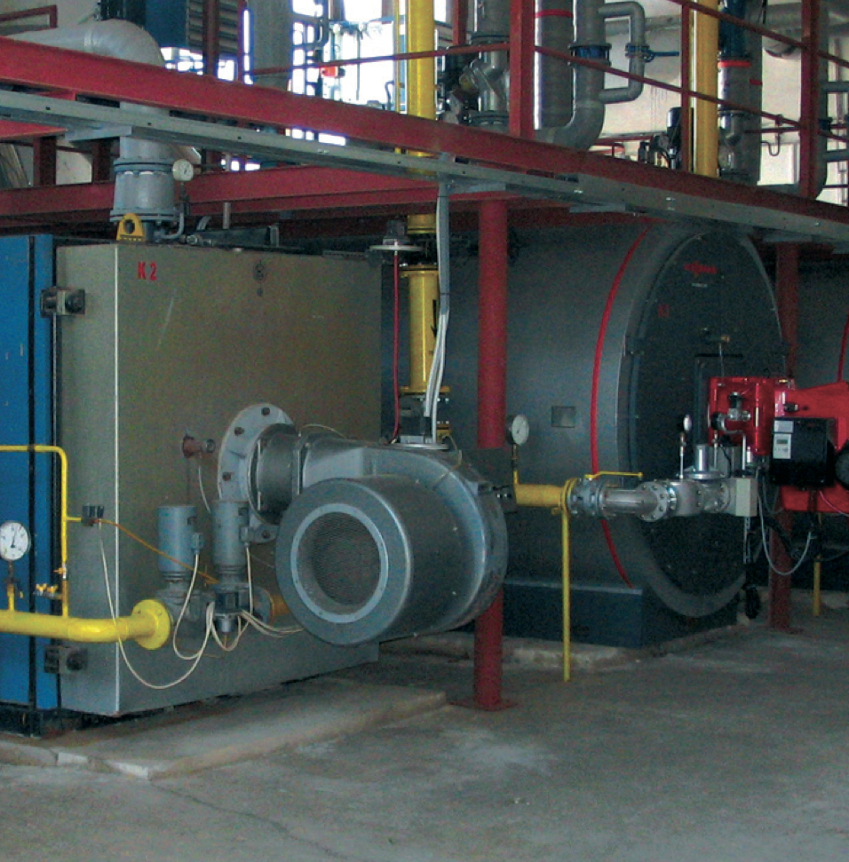 Picture 3 – Existing  geothermal plant
