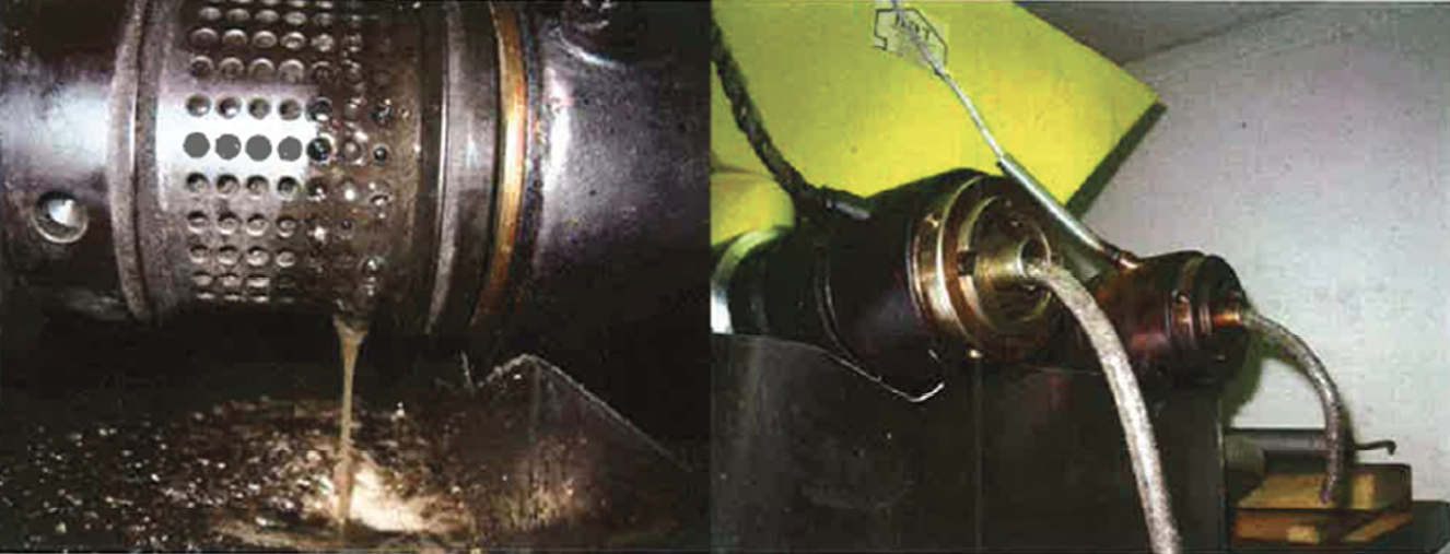 Picture 3 – The plant oil  press with the two screws